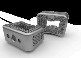 可調整彈性模數的可橈性結構